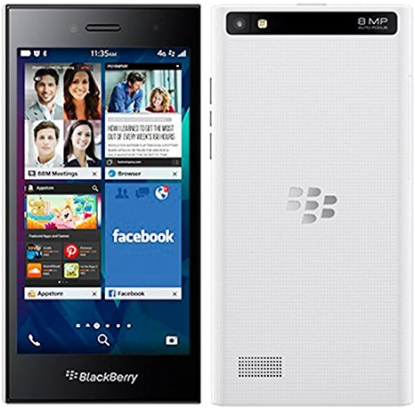 wholesale blackberry leap